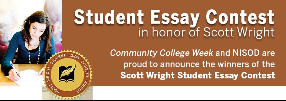 commonwealth essay contest winners