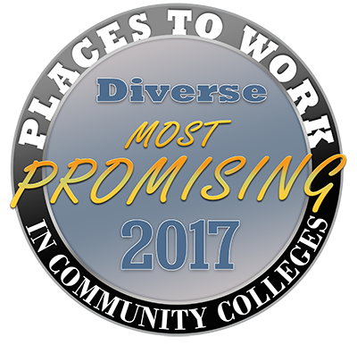 2017 Promising Places Logo