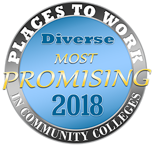 2018 Promising Places Logo