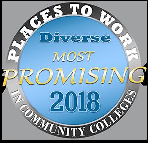 2018 Promising Places Logo