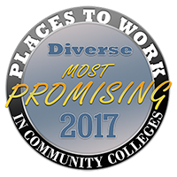 Promising Places to Work in Community Colleges logo