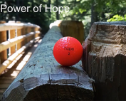Impacting Student Success Through the Power of Hope preview