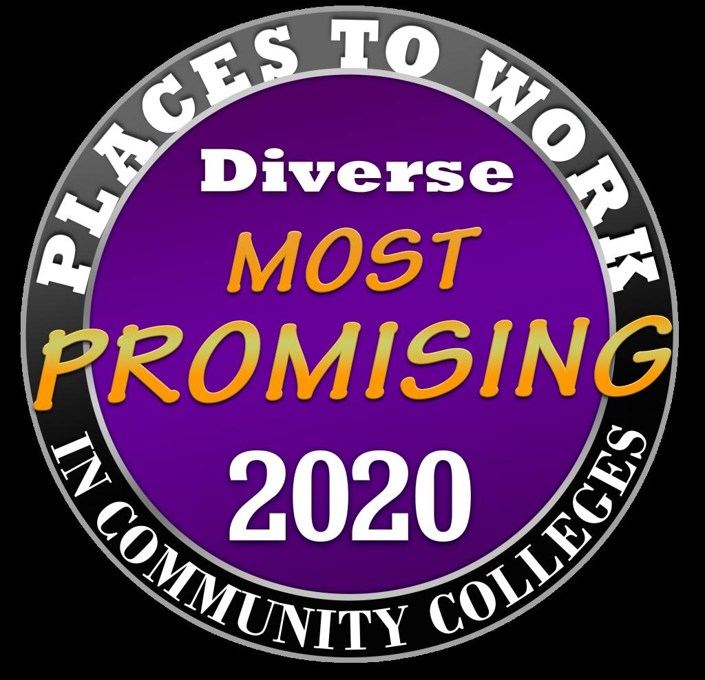 2020 PPWCC Logo