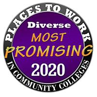 2020 MPPWCC Logo Image